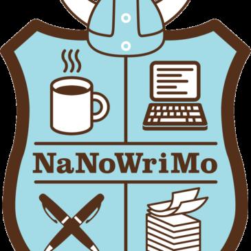 NaNoWriMo writing